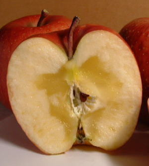 apple003.jpg